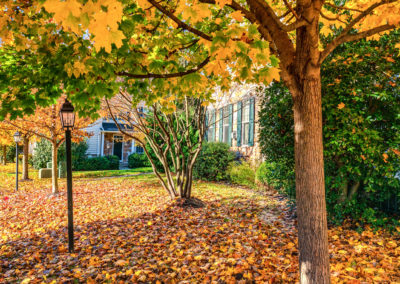 Heritage Orchard Hill Tree Lined Path to Townhomes in Perkasie, PA